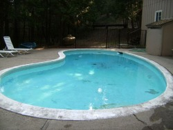 Pool Serviced 1
